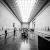 The Parthenon Marbles (Elgin Marbles)