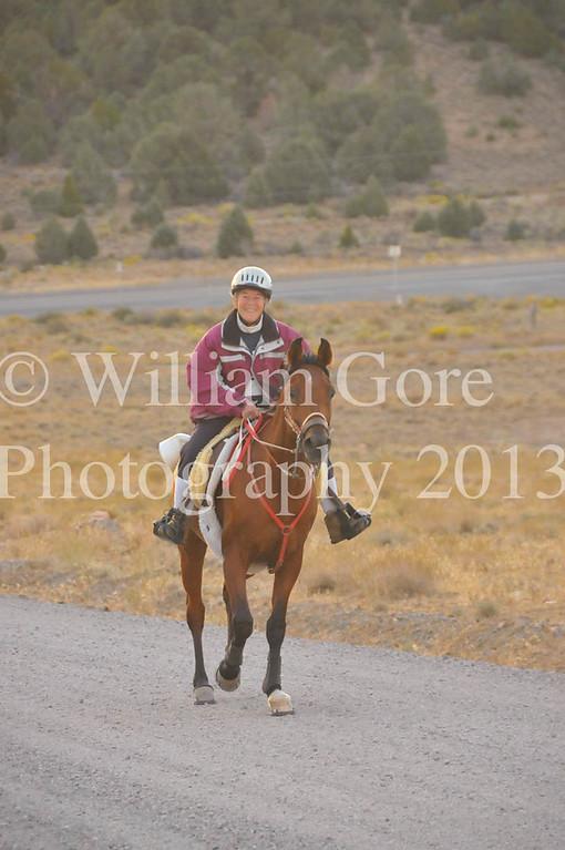 2013 Endurance Rides