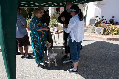 10-05-13 Blessing of the Animals