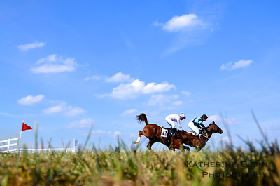 October - The Middleburg Fall Races.