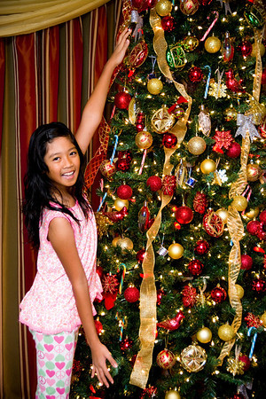 Ariya & Christmas Tree:  December 1, 2013