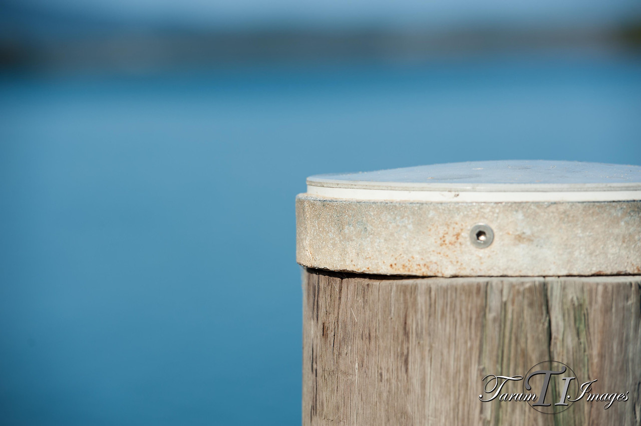 © Coffs Coast Dragon Boat Regatta-Mylestom-September 15, 2013-22