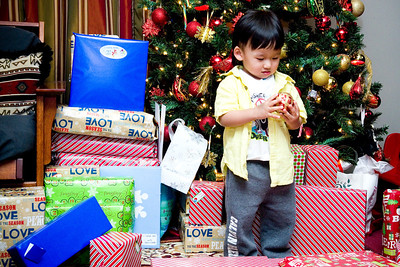 Family Christmas:  December 25, 2013
