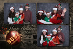 2013_11_Buzz_Holiday2_0131