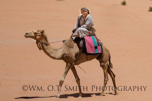 We thought we might see a couple of Bedouins and camels in a tourist setting, but Bedouins are a major portion of the population of Jordan and we saw them everywhere.