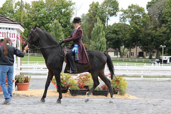 022 Open Saddle Seat Pleasure