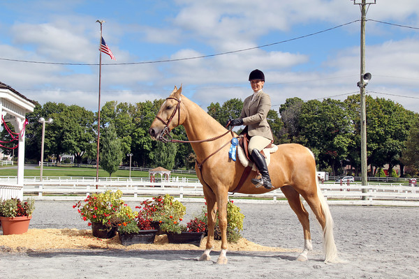 028 Open Equitation With a Pattern