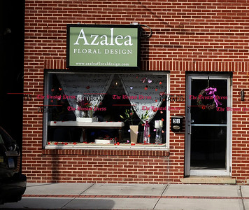 2/1/2013 Mike Orazzi | Staff  Azalea Floral Design in Plainville. ** for a Diane story **