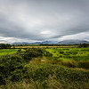 Killarney Countryside