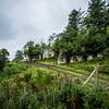 Traditional Irish Home Ruins