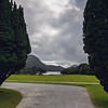 Muckross House Gardens