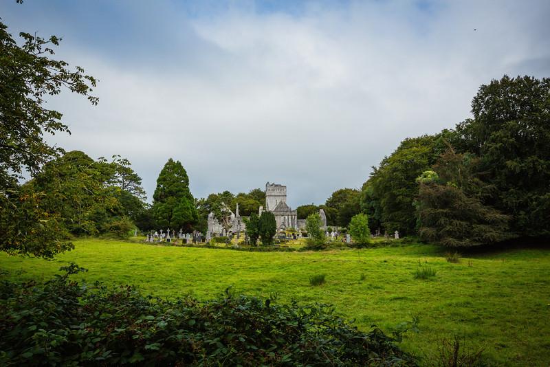 Muckross Abbey Ruins