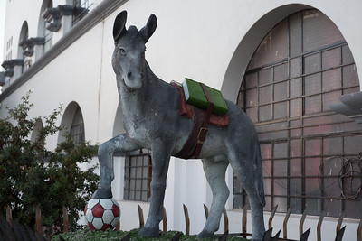 Not really sure why this donkey is carrying a math textbook, and playing with a soccer ball