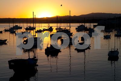 Day 278 - Monterey Sunrise