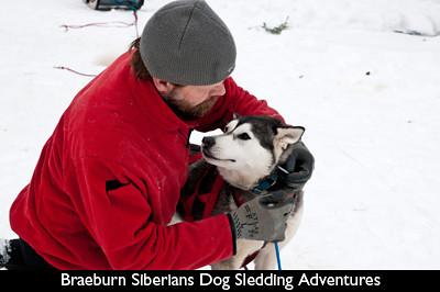 DogSledding-big