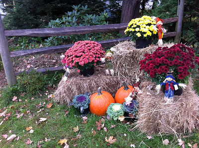 out front of the Laundry Room Woodstock Vermont submitted by Terry Lavasser
