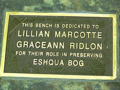 bench at Eshqua Bog-4_edited-1
