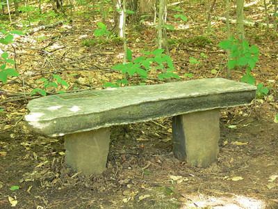 bench at Eshqua Bog-3_edited-1