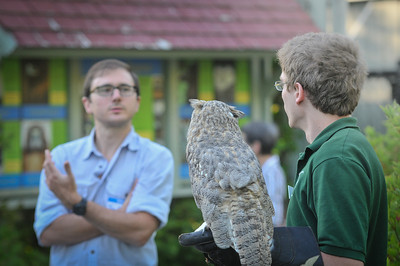 Patrick O'Roark talks with Teo Zagar about the Bard Owl