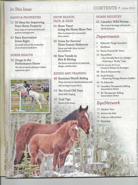 this is a picture I took of a mare and colt..it is also featured on the second page of the story