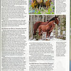 the larger picture of a mare and colt are from my collection