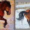 """this artist rendition of band 1 stallion being frisky was inspired by my photograph on the right.  The very talented artists name is Diane Thom and she has painted this picture and donated it to Virginia Hastings project """"Lost In The Wind"""" to be auctioned to support this project.   Here is the link to this project on saving Alberta;s Wild Horses:  <a href=""""https://www.facebook.com/LostInTheWindAVirginiaHastingsProduction?hc_location=stream"""">https://www.facebook.com/LostInTheWindAVirginiaHastingsProduction?hc_location=stream</a><br /> <br /> This is a great project and if you can help in anyway please do."""