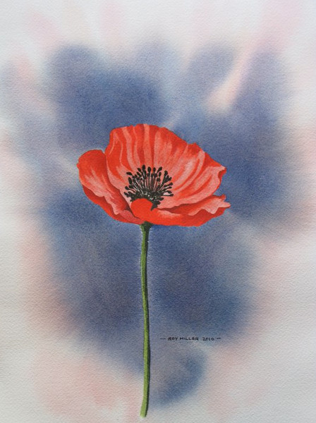 painting of a poppy by a photography friend of mine Roy Millar