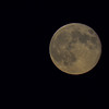 supermoon - it was so nice and clear last night
