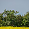 another larger lens and you can see it quite easily here<br /> focal length 600 mm not cropped