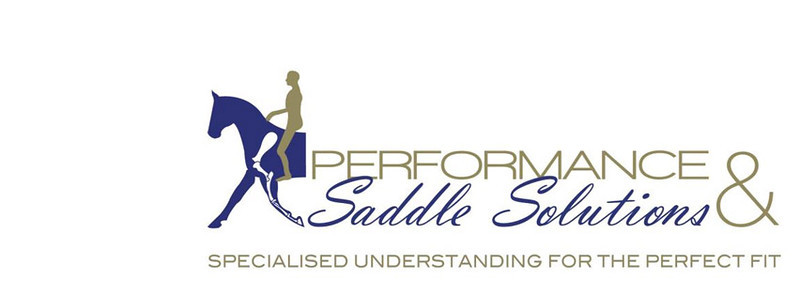 Performance Saddle Solutions
