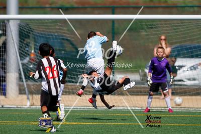 San Jose Cup 2013