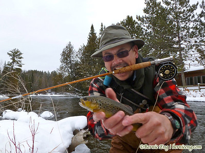 The self timer on the Lumix gives a three shot burst--during which this brown trout decided to play games. Wetting my hands in this weather so I don't harm the fish makes for a not-so-easy hold.