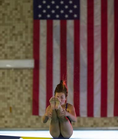 2013 DHS Girls Swimming vs. Wilton
