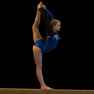 2016 DHS Gymnastics vs. Trumbull