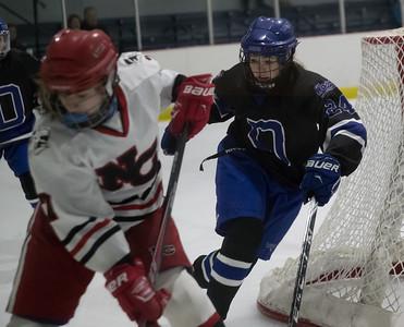 2017 DHS Girls Hockey vs. New Canaan