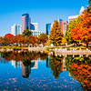 charlotte city skyline autumn season