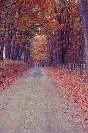 Fall Road; Chrysalis Winery 2013