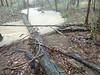 Creek had broken the bank and receded
