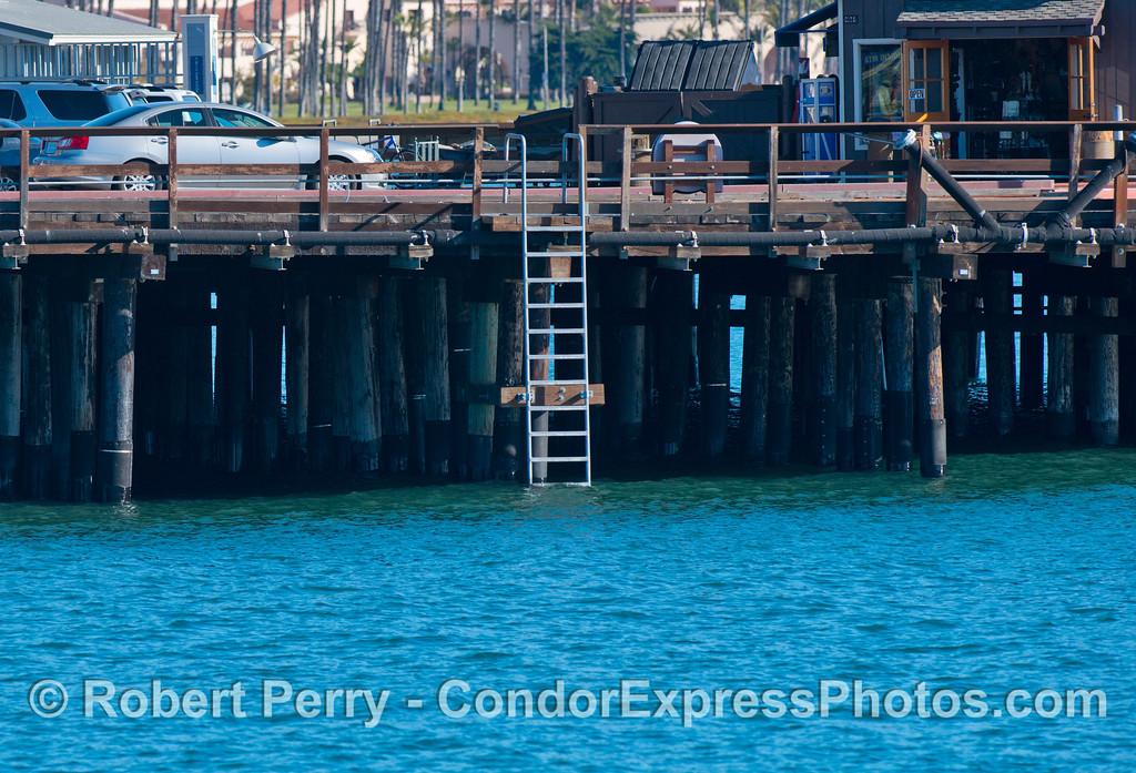 king tide high tide Stearns Wharf ladder 2013 01-12 SB Harbor-006