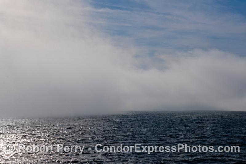 fog 2013 03-02 SB Channel-a-029
