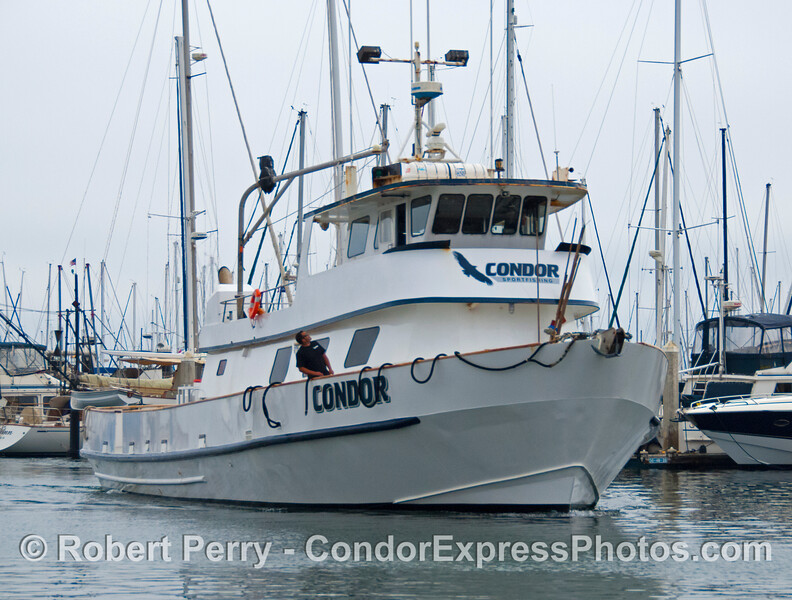 Condor arrives 2013 03-16 SB Harbor-060