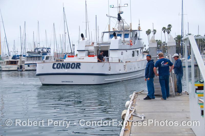 Condor arrives 2013 03-16 SB Harbor-089
