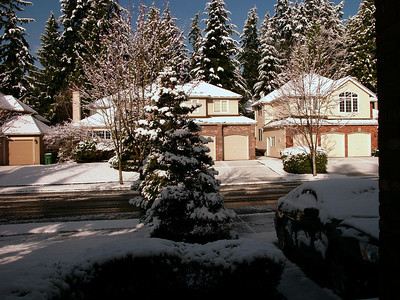 2013-03-22 Spring Snow