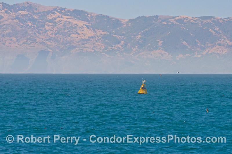 NOAA East Channel buoy 46053 Sta Cruz Isl in back 2013 06-19 SB Channel-001
