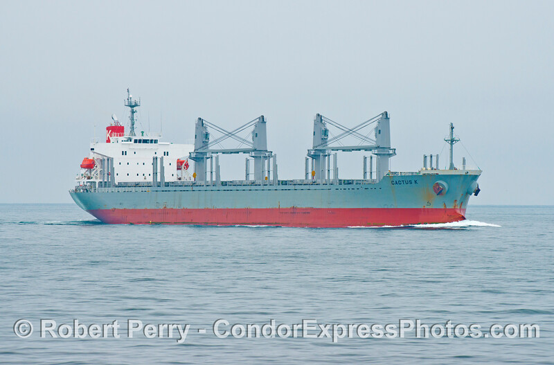 The bulk carrier vessel Cactus K is headed south to the Port of Los Angeles.