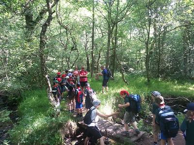 2013-07-13 Cub Camp