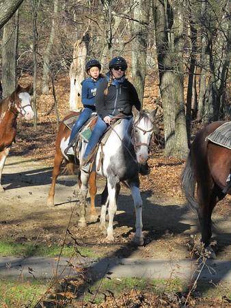 2013-11-Skyline-Drive-Horses