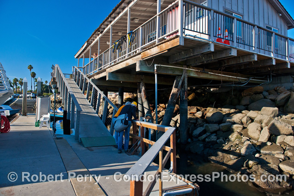 King Tides:  low tide - bow of Condor Express, walk ramp and the Sea Landing, Santa Barbara Harbor.