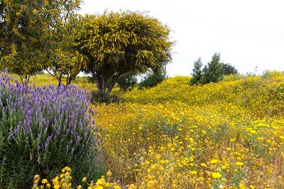 2013 April: Cipru