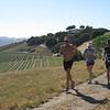 A warm day for the Vineyard run
